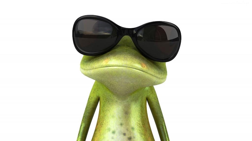 żaba_ciemne_okulary